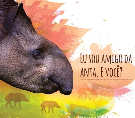 Anta - 2013