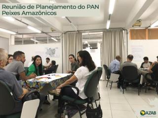REUNIÃO DE PLANEJAMENTO DO PAN PEIXES AMAZÔNICOS